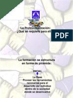 La Profesionalización 3 1