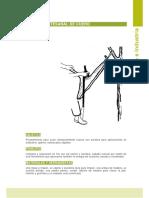 I017.Curtido artesanal de cuero.Chile.pdf