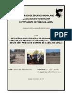 Trabalho Final - ESTRATÉGIAS DE PRODUÇÃO DE BOVINOS NO SECTOR FAMILIAR, EM RESPOSTA ÀS MUDANÇAS CLIMÁTICAS, EM ZONAS SEMI-ÁRIDAS DO DISTRITO DE MABALANE (GAZA)