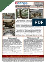 2010-01-Beacon-s.pdf