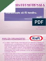 122416009-Campanie-Promotionala-Milka.pptx