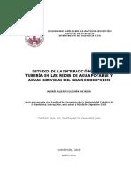 2011Guzman.pdf
