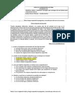 GUÍA COMPRENSIÓN LECTORA 8º basico