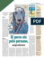 El Perro Sin Pelo Peruano