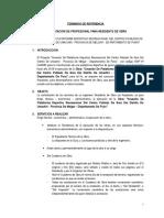 TERMINOS_DE_REFERENCIA_DE_RESIDENTE_DE_OBRA-1[1].doc