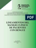 lineamientos2011.pdf