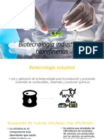 PPT Industrial Bioindustria