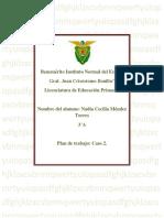 Plan de trabajo Caso 2 Nadia.docx
