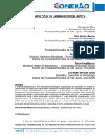 001_Biomedicina-A-Fisiopatologia-da-Anemia-Sideroblástica-1