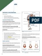 10. Enfermería del niño y del adolescente.pdf
