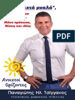 Τσίγγανος Πρόγραμμα συνδυασμού.pdf