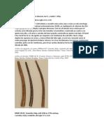 TROMPETA. organologia.docx