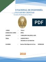 Informe 3 Fisica 1.docx