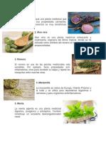 Plantas Medicinales 2019.docx
