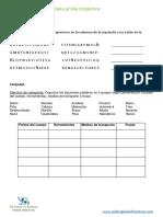 Atencion-y-concentracion-7.pdf