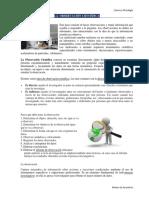 LA OBSERVACION.docx