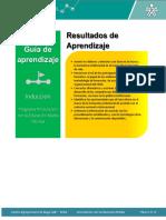 Guia final Induccion.pdf
