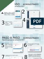 PASO A PASO RGT (Administrado).pdf