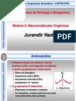 Módulo 5 - Moléculas orgânicas.pdf