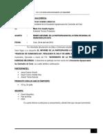 informe de feria - carrizales.docx