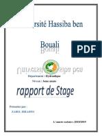 Rapport de Stage JHGVF