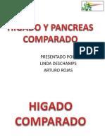 Higado y Pancreas Comparado