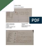 Guía para la evaluación del estándar EC 0586 - CON RESPUESTAS.docx