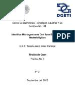 identificacion de microorganismos .pdf