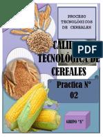 INFORME 2 Cereales Discusiones