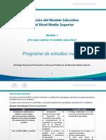PDF Perfilegreso Ame1