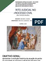 O perito judicial no processo civil