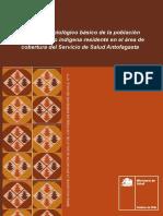 SERIE PUBLICACIONES SITUACION DE SALUD Nº 11 ANTOFAGASTA.pdf