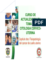3. Anatomia y Semiologia