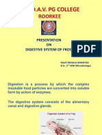 digestive system of frog-converted.pdf