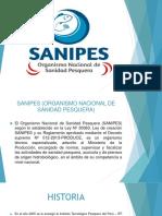 DIAP.SANIPES.RN.pptx