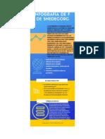 infografia12.pdf