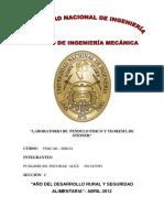 INFORME DE PENDULO FISICO 2013 (1).docx