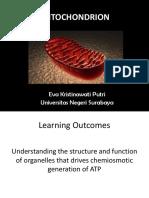 mitokondria-1.ppt