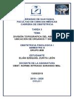 DIVISIÓN TOPOGRAFICA DEL ABDOMEN, UBICACIÓN DE ORGANOS Y SISTEMAS