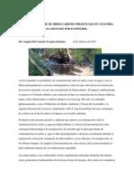 Artículo Derrame de Petroleo
