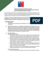 BASES PSICOLOGO PROGRAMA BARRIOS 14052019.docx