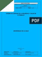SISTEMA-DE-GESTION-DE-LA-SEGURIDAD ejemplo.docx