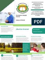 Brochure Omayda