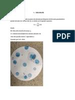 Informe Azul de Metileno