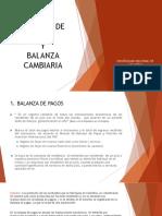 Balanza de Pagos (1)