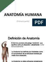 Anatomía Humana 1.1