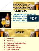 245728563-PRODUCAO-CERVEJA.pdf