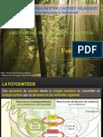 5. FOTOSINTESIS.pptx