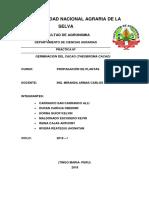 GERMINACION DEL CACAO.docx