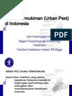 Hama Permukiman Di Indonesia
